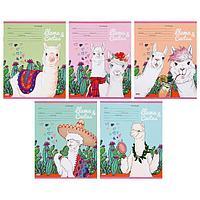 Тетрадь 12 листов в клетку 'Кактусы и ламы', обложка мелованный картон, блок офсет, МИКС (комплект из 25 шт.)