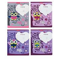 Тетрадь 12 листов в клетку Lucky Owl, обложка мелованный картон, блок офсет, МИКС (1 вид в спайке) (комплект