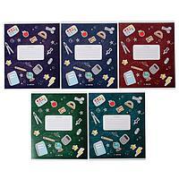 Тетрадь 12 листов в линейку 'Школа', обложка мелованный картон, ВД-лак, блок офсет, МИКС (5 видов в спайке)