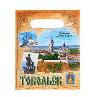 Пакет подарочный 'Тобольск' (комплект из 20 шт.)