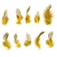 Набор перьев для декора 10 шт., размер 1 шт 5 x 2 см, цвет жёлтый с коричневым