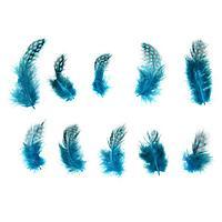 Набор перьев для декора 10 шт., размер 1 шт 5 x 2 см, цвет бирюзовый с чёрным