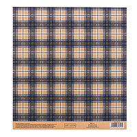Бумага для скрапбукинга с клеевым слоем 'Тартан', 20 x 21,5 см, 250 г/м (комплект из 10 шт.)