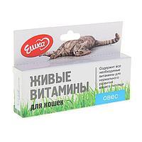 Живые витамины 'Ешка' Овёс для кошек, 20 г (комплект из 2 шт.)