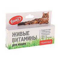 Живые витамины 'Ешка' Пшеница для кошек, 20 г (комплект из 2 шт.)