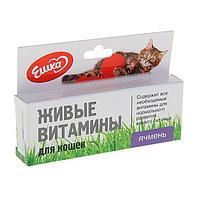 Живые витамины 'Ешка' Ячмень для кошек, 20 г