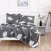 Комплект «Дарси №10»: 230 × 250 см, одеяло 160 × 220 см-2 шт, 50 × 70 см - 2 шт