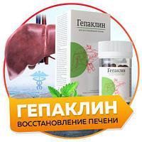 Гепаклин для восстановления печени