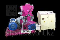 Пресс-экструдер ПЭ-900С