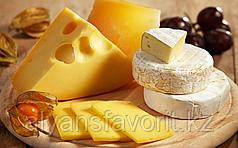Комплект оборудования для производства мягких и твердых сыров (сыроварня) ИПКС-0116, произв. 2000 л/сутки