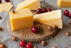 Комплект оборудования для производства твердых сыров (сыроварня) ИПКС-0123, произв. 300 л/сутки