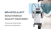 Аппарат для наращивания мышц Emsculpt, фото 1