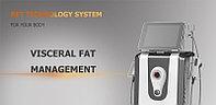 Система управления висцеральным жиром, фото 1