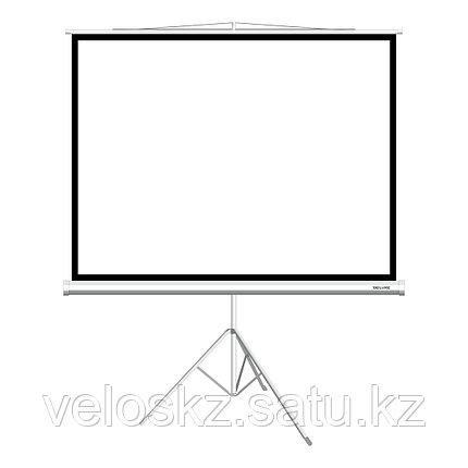 """Delux Экран на треноге Deluxe DLS-T203x154W (80""""х60""""), фото 2"""