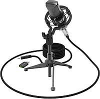 RITMIX Микрофон RITMIX RDM-160 черный