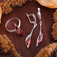 Гарнитур посеребрение 2 предмета серьги, кольцо 'Янтарь' лотос, цвет коричневый, 19 размер