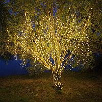 Услуги светового декоративного оформления деревьев и кустарников