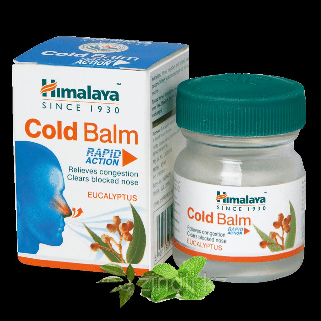 Бальзам от простуды Колд балм, Гималаи (Cold Balm, Himalaya), 10 гр