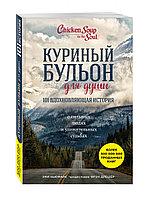 Книга «Куриный бульон для души: 101 вдохновляющая история о сильных людях и удивительных судьбах» Эми Ньюмарк