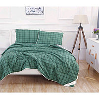 Комплект «Дарси №14»: 230 × 250 см, одеяло 160 × 220 см-2 шт, 50 × 70 см - 2 шт