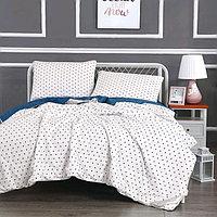 Комплект «Дарси №12»: 230 × 250 см, одеяло 160 × 220 см-2 шт, 50 × 70 см - 2 шт