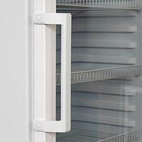 Витринный холодильник Бирюса-461RN, фото 4