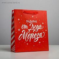 Пакет ламинированный вертикальный «Подарок от Деда Мороза», ML 23 × 27 × 11,5 см