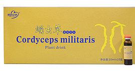 Жидкий кордицепс Cordyceps Militaris Plant Drink натуральный препарат для иммунитета