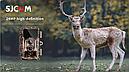 Защищенная видео-фотоловушка/охотничья камера 24Мп с супер ночным виденьем и WiFi (новинка 2021года!), фото 2