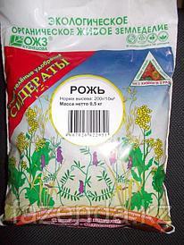 Семена сидерат  Рожь озимая 1 кг
