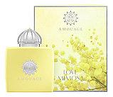 Женский парфюм Amouage Love Mimosa, фото 2