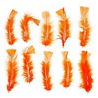 Набор перьев для декора 10 шт, цвет оранжевый -4