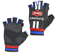 Giant перчатки - Alpecin Team