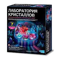 4M: Лаборатория кристаллов. Суперколлекция, меняющая цвет
