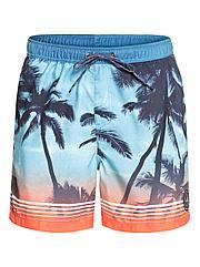 Шорты пляжные мужские Quiksilver Paradisevl17