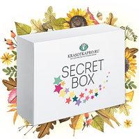 Secret Box, Сентябрь 2017