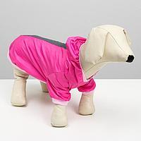 Куртка-ветровка со светоотражающими полосками, M (ДС 24-26 см, ОШ 28 см, ОГ 34-36 см),