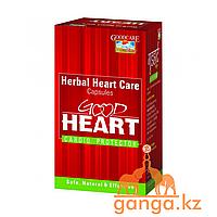 Кардиопротекторный препарат Здоровое Сердце (Good Heart GOOD CARE BAIDYANATH), 60 кап.