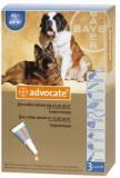 Bayer Адвокат №3 для собак  от 25 до 40 кг (3 пипетки х 4 мл)
