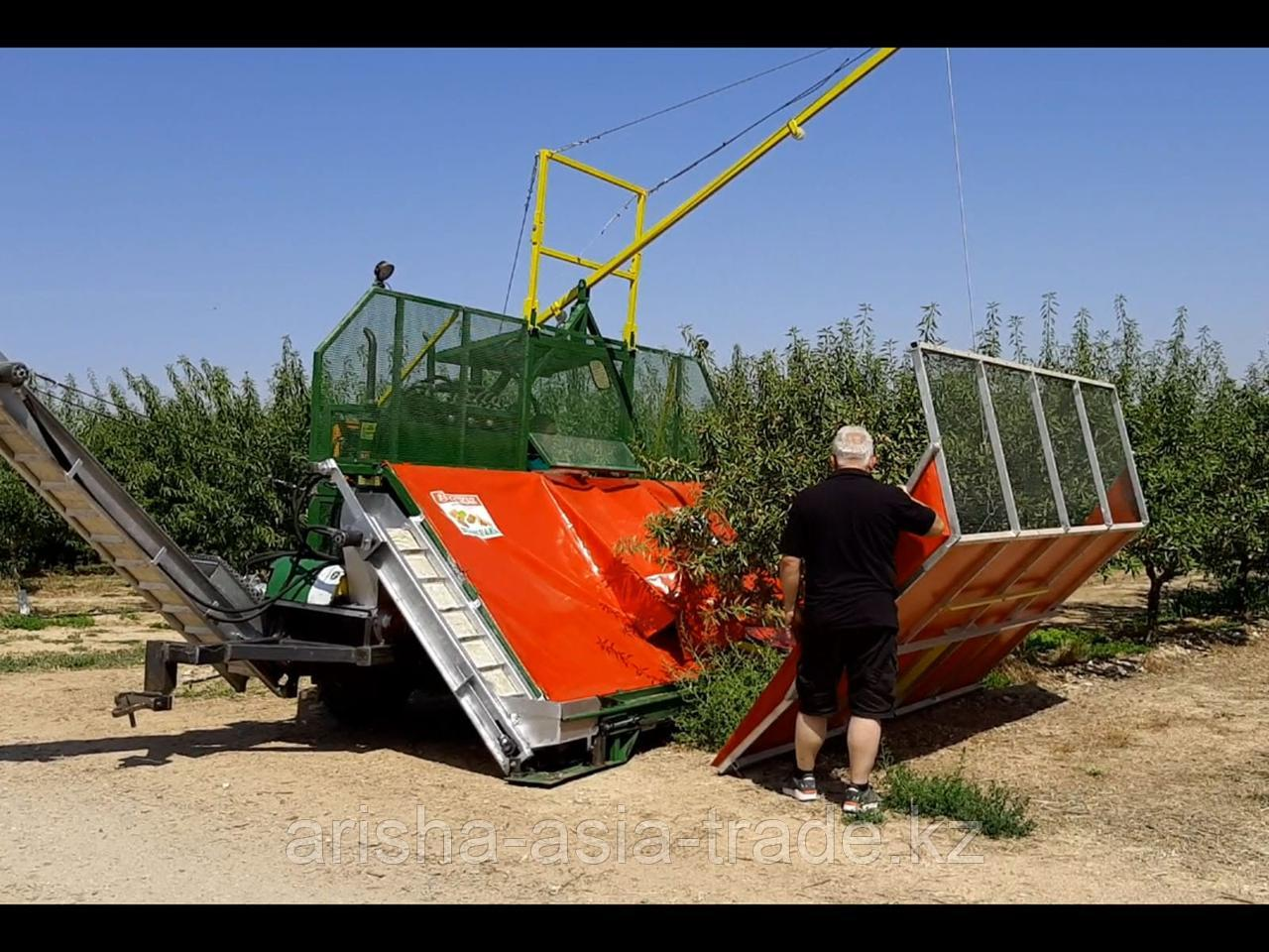 Оборудование по сбору урожая грецкого ореха и миндаля Европа