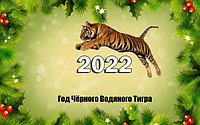 Новый год 2022 ГОД Тигра