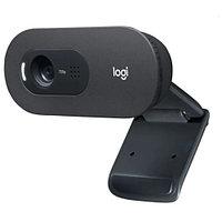 Веб-камера Logitech C505 HD Webcam