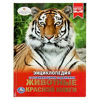 Энциклопедия с развивающими заданиями 'Животные красной книги'