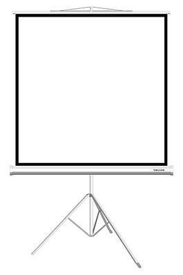 Экран на треноге Deluxe DLS-T244W - Белый