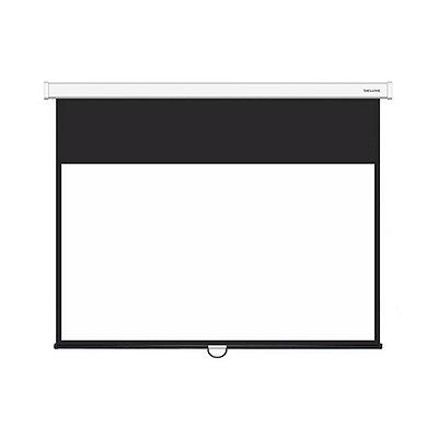 Экран настенный Deluxe DLS-M221x121W - Белый - Черный