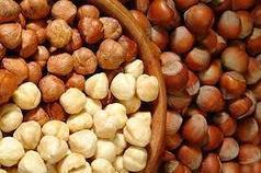 Саженцы фундука - лесного ореха