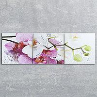 """Часы настенные, модульные, серия: Цветы, """"Орхидеи"""", 35х110 см, микс"""