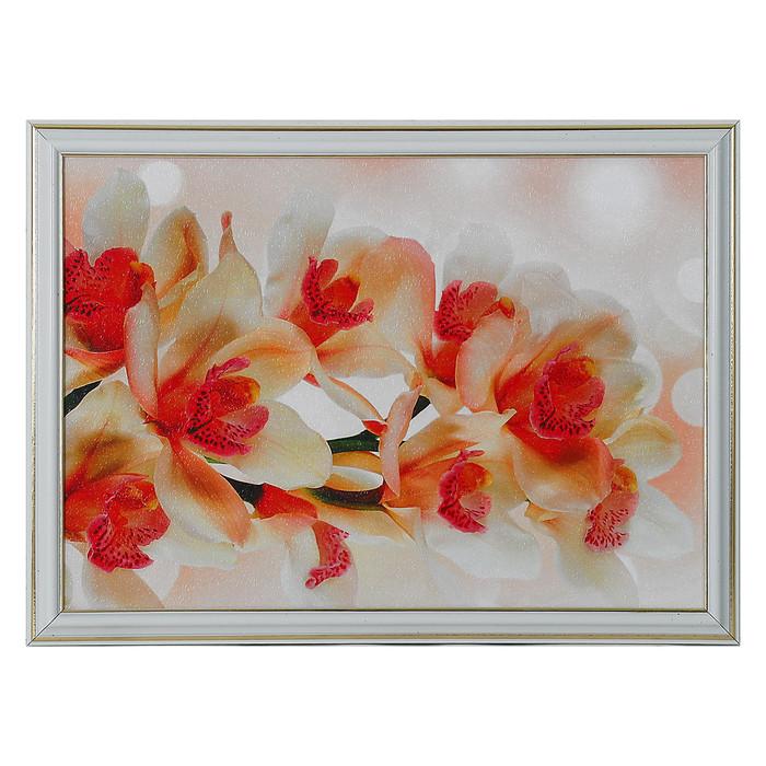 """Картина """"Красивая орхидея"""" 28*38 см"""
