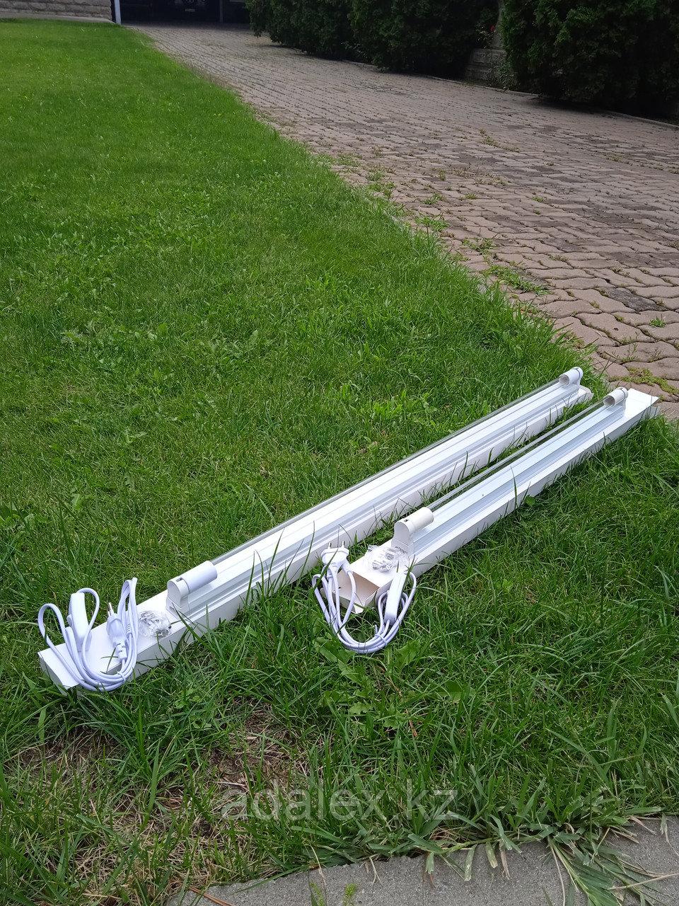 Кварцевая лампа настенная - фото 4
