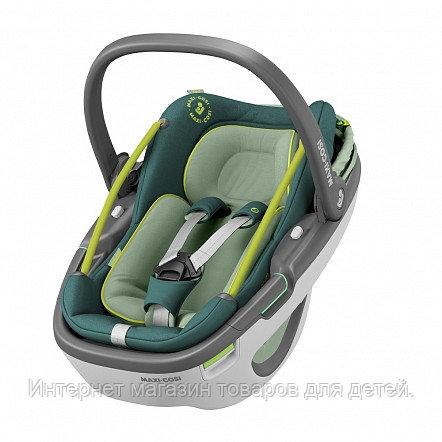 Maxi-Cosi Удерживающее устройство для детей 0-13 кг Сoral  Neo Green/зеленый 2шт/кор